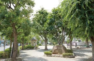 並木東児童遊園 約510m(徒歩7分)