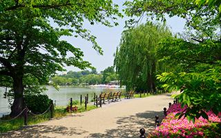 上野恩賜公園 約810m(徒歩11分)