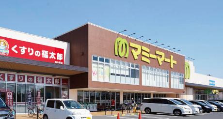 マミーマート柏の葉店 約790m(徒歩10分)