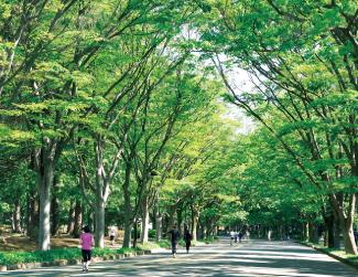 都立 駒沢オリンピック公園 約2.4km(車4分)