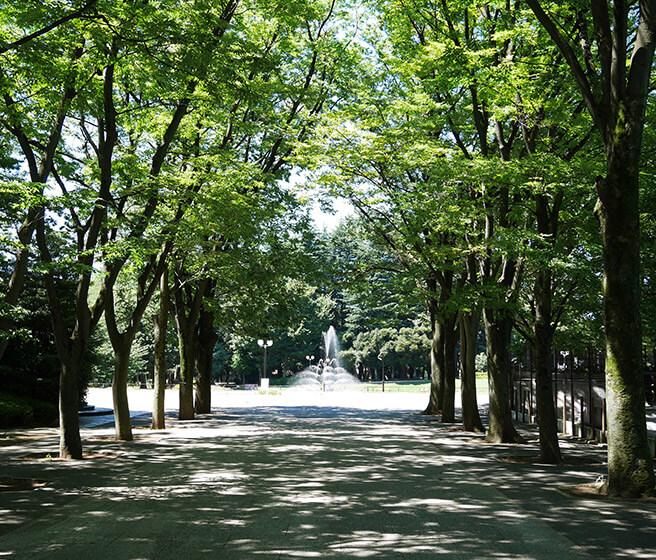 区立世田谷公園 約1,190m(徒歩15分)