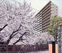 イニシア板橋 桜レジデンス