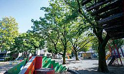 高辻公園 約170m(徒歩3分)