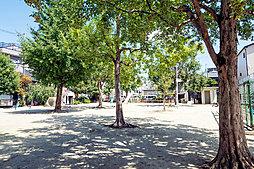 姉坊城児童公園 約350m(徒歩5分)