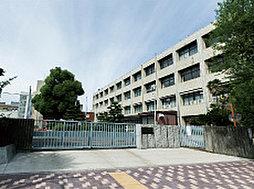 私立東海中学校・東海高校 約1,240m(徒歩16分)