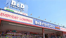 B&Dドラッグストア 上小田井店 約580m(徒歩8分)