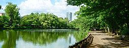 石神井公園 約1,110m(徒歩14分)