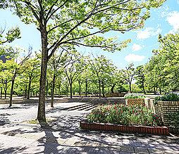 中央公園 約560m(徒歩7分)