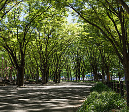 白川公園 約420m(徒歩6分)