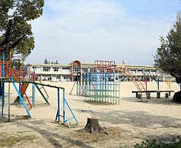 市立 羽根小学校 約570m