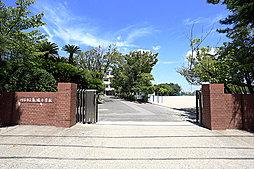 市立 亀城小学校 約1,040m(徒歩13分)