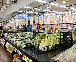 関根生鮮市場 約20m(徒歩1分)