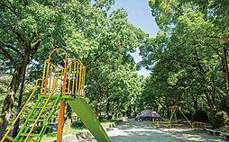 田辺公園 約590m(徒歩8分)