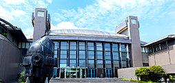 川崎市市民ミュージアム 約1,260m(徒歩16分)
