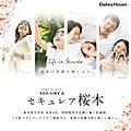【ダイワハウス】セキュレア桜木 (建築条件付宅地分譲)