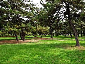 浜寺公園 徒歩6分(460m)