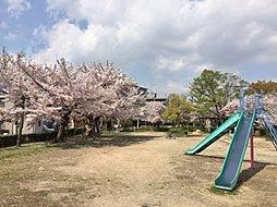 「クリアコート阪神尼崎」平均敷地面積30坪超 資料請求開始