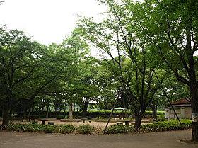 城北中央公園