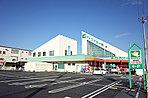 フレンドマート長浜祇園店  (徒歩4分約310m)