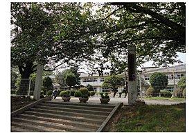 島名小学校