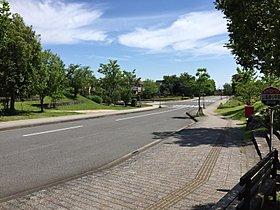 緑豊かな街並みと広々歩道