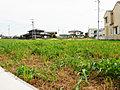【NEW】流山おおたかの森駅まで徒歩8分【建築条件なし売地】全9区画 公園あり 子育て環境充実