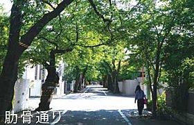世田谷百景に選ばれている上北沢駅前から延びる「肋骨通り」