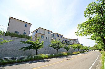 香里ヶ丘さくら通りに面したビッグタウンが誕生します!(平成29年2月RISE街区にて撮影)