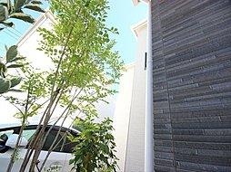 移ろう翠のファザード ~空間がもたらすそよ風の家~