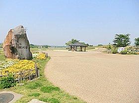 広大な敷地に遊具・グランド・芝・桜が豊富に並ぶ相模三川公園♪