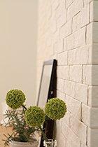 湿度や臭いをコントロールする壁「エコカラット」採用。