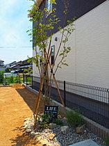 四季を通じて成長を楽しむことのできる植栽がいっぱい!
