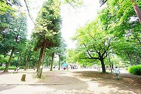 ◆◇淵野辺公園◇◆