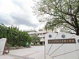 さいたま市立上木崎小学校まで1300m 小学校上木崎小学校: