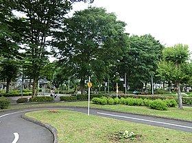青梅市交通公園:徒歩22分(1700m)