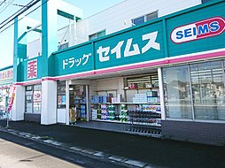 ドラッグセイムス 富木島店