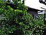 その他,1K,面積20m2,賃料4.9万円,東急田園都市線 溝の口駅 徒歩12分,東急田園都市線 二子新地駅 徒歩5分,神奈川県川崎市高津区二子4丁目