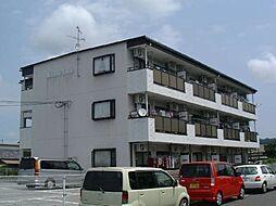 滋賀県近江八幡市安土町小中の賃貸マンションの外観