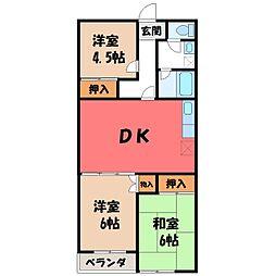 栃木県宇都宮市中戸祭1丁目の賃貸マンションの間取り