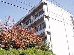 マンション香楽[2階]の外観