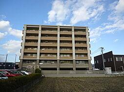 愛知県岡崎市大門5丁目の賃貸マンションの外観