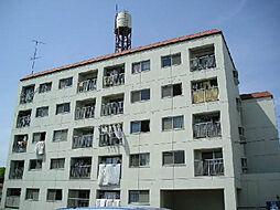 啓伸ハイツ[3階]の外観