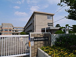 黒田荘[11号室]の外観