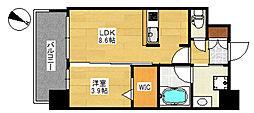 エンクレスト天神SIDE[2階]の間取り