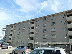 滋賀県栗東市安養寺7丁目の賃貸マンションの外観