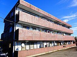 茨城県筑西市布川の賃貸マンションの外観