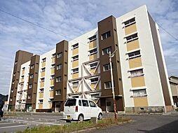 滋賀県長浜市南小足町の賃貸マンションの外観