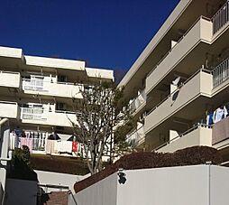神奈川県川崎市麻生区片平の賃貸マンションの外観