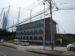 福岡県糸島市泊の賃貸マンションの外観