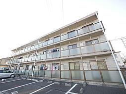 神奈川県伊勢原市岡崎の賃貸マンションの外観